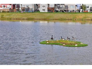 Photo 31: 2092 LUXSTONE Boulevard SW: Airdrie House for sale : MLS®# C4032728