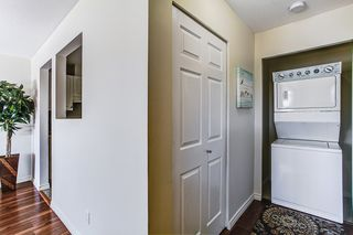 Photo 9: 202 22347 LOUGHEED Highway in Maple Ridge: West Central Condo for sale : MLS®# R2055111