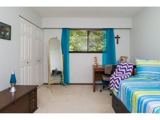 Photo 13: 9074 117TH Street in Delta: Annieville House for sale (N. Delta)  : MLS®# R2080794