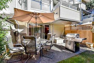 """Photo 18: 128 8060 121A Street in Surrey: Queen Mary Park Surrey Townhouse for sale in """"Hadley Green"""" : MLS®# R2100161"""