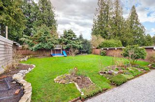 "Photo 11: 11502 96A Avenue in Surrey: Royal Heights House for sale in ""Royal Heights"" (North Surrey)  : MLS®# R2154865"