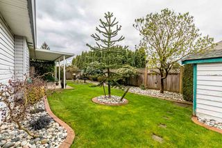 Photo 18: 3493 TRETHEWEY Street in Abbotsford: Abbotsford West House for sale : MLS®# R2156237