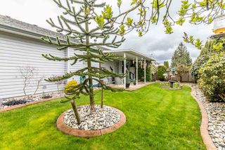 Photo 19: 3493 TRETHEWEY Street in Abbotsford: Abbotsford West House for sale : MLS®# R2156237