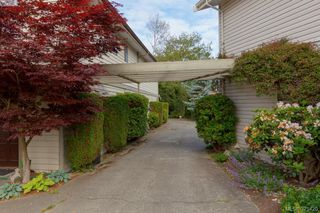 Photo 12: 3024 Cedar Hill Road in VICTORIA: Vi Oaklands Townhouse for sale (Victoria)  : MLS®# 379420