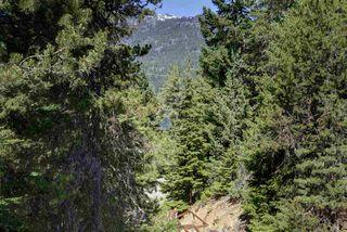 Photo 18: 3035 ST ANTON Way in Whistler: Alta Vista House for sale : MLS®# R2184450