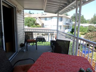 Photo 20: 28 3110 Trafalgar in Abbotsford: Central Abbotsford Townhouse for sale : MLS®# R2191985