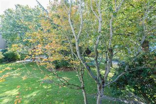 "Photo 13: 128 8880 NO 1 Road in Richmond: Boyd Park Condo for sale in ""APPLE GREEN"" : MLS®# R2211807"