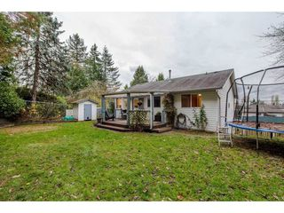 Photo 19: 3140 IMMEL Street in Abbotsford: Abbotsford East House for sale : MLS®# R2221845