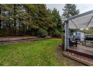 Photo 18: 3140 IMMEL Street in Abbotsford: Abbotsford East House for sale : MLS®# R2221845