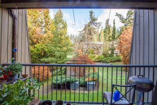 Photo 17: 237 9101 HORNE STREET in Burnaby: Government Road Condo for sale (Burnaby North)  : MLS®# R2221514