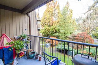 Photo 18: 237 9101 HORNE STREET in Burnaby: Government Road Condo for sale (Burnaby North)  : MLS®# R2221514