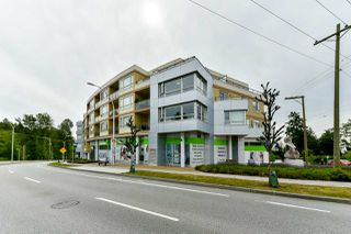 """Photo 19: 411 19228 64 Avenue in Surrey: Clayton Condo for sale in """"FOCAL POINT"""" (Cloverdale)  : MLS®# R2279932"""