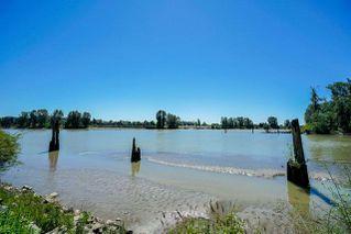 "Photo 19: 226 3 RIALTO Court in New Westminster: Quay Condo for sale in ""The Rialto"" : MLS®# R2281485"