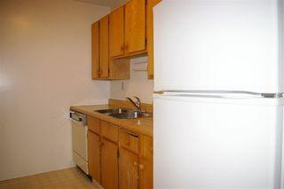 Photo 11: 303 10528 29 Avenue in Edmonton: Zone 16 Condo for sale : MLS®# E4144294