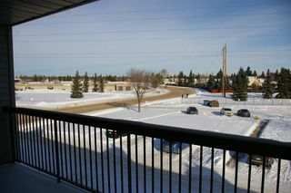 Photo 6: 303 10528 29 Avenue in Edmonton: Zone 16 Condo for sale : MLS®# E4144294