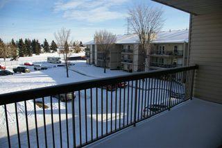 Photo 7: 303 10528 29 Avenue in Edmonton: Zone 16 Condo for sale : MLS®# E4144294