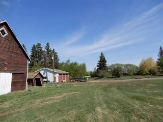 Photo 4: Township 552 Highway #28A: Rural Sturgeon County Rural Land/Vacant Lot for sale : MLS®# E4147552