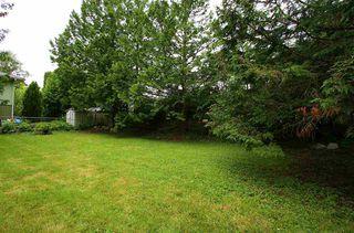 Photo 14: 5255 9 Avenue in Delta: Tsawwassen Central House for sale (Tsawwassen)  : MLS®# R2373608