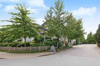 Photo 16: 31 6533 121 Street in Surrey: West Newton Townhouse for sale : MLS®# R2374506