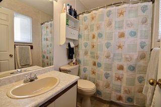 Photo 15: 17956 57 Avenue NW in Edmonton: Zone 20 House for sale : MLS®# E4159666