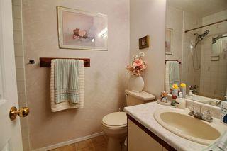 Photo 12: 17956 57 Avenue NW in Edmonton: Zone 20 House for sale : MLS®# E4159666