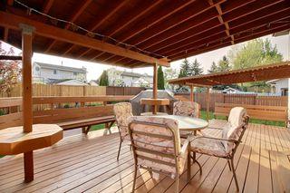 Photo 19: 17956 57 Avenue NW in Edmonton: Zone 20 House for sale : MLS®# E4159666