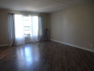 Photo 4: 53 Oak Ridge Drive in Edmonton: Zone 42 Mobile for sale : MLS®# E4161772