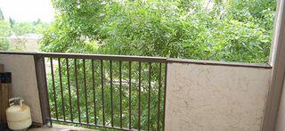 Photo 2: 302 43 AKINS Drive: St. Albert Condo for sale : MLS®# E4162784