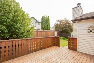 Photo 23: 4339 29 Street in Edmonton: Zone 30 House for sale : MLS®# E4169635