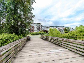 "Photo 31: 203 23215 BILLY BROWN Road in Langley: Fort Langley Condo for sale in ""WATERFRONT AT BEDFORD LANDING"" : MLS®# R2460777"