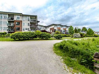 "Photo 34: 203 23215 BILLY BROWN Road in Langley: Fort Langley Condo for sale in ""WATERFRONT AT BEDFORD LANDING"" : MLS®# R2460777"