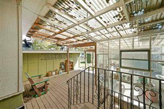 Photo 17: 20994 LOUGHEED Highway in Maple Ridge: Southwest Maple Ridge House for sale : MLS®# R2464766