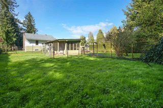 Photo 5: 20994 LOUGHEED Highway in Maple Ridge: Southwest Maple Ridge House for sale : MLS®# R2464766