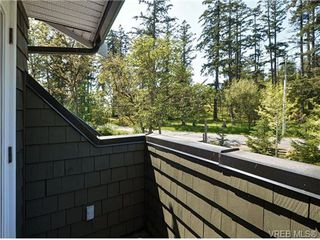 Photo 11: 1965 W Burnside Rd in VICTORIA: VR Hospital House for sale (View Royal)  : MLS®# 701142