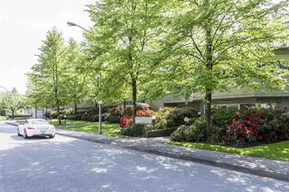 Photo 13: 104 3051 AIREY Drive in Richmond: West Cambie Condo for sale : MLS®# R2022391