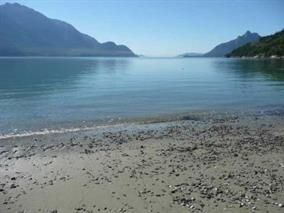 "Photo 2: Lot 5 FIVE - COVES HOWE SOUND in Squamish: Squamish Rural Land for sale in ""5-COVES"" : MLS®# R2039014"