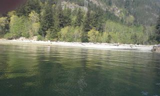 "Photo 9: Lot 5 FIVE - COVES HOWE SOUND in Squamish: Squamish Rural Land for sale in ""5-COVES"" : MLS®# R2039014"