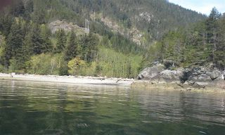 "Photo 6: Lot 5 FIVE - COVES HOWE SOUND in Squamish: Squamish Rural Land for sale in ""5-COVES"" : MLS®# R2039014"