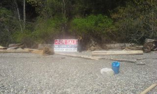 "Photo 8: Lot 5 FIVE - COVES HOWE SOUND in Squamish: Squamish Rural Land for sale in ""5-COVES"" : MLS®# R2039014"