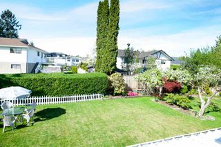 Photo 5: 3345 CARDINAL Drive in Burnaby: Government Road House for sale (Burnaby North)  : MLS®# R2067088