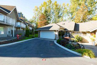 "Photo 3: 11 21848 50 Avenue in Langley: Murrayville Townhouse for sale in ""Cedar Crest Estates"" : MLS®# R2115558"