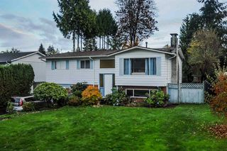Photo 1: 22918 EAGLE Avenue in Maple Ridge: East Central House for sale : MLS®# R2121887