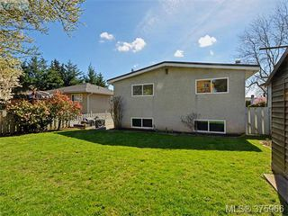 Photo 20: 244 Sims Ave in VICTORIA: SW Gateway House for sale (Saanich West)  : MLS®# 754713