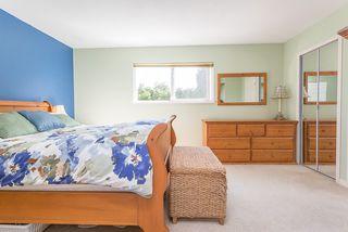 Photo 11: 21060 118 Avenue in Maple Ridge: Southwest Maple Ridge House for sale : MLS®# R2153246