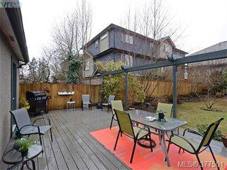 Photo 19: 2634 Sunderland Rd in VICTORIA: La Langford Proper Single Family Detached for sale (Langford)  : MLS®# 757939