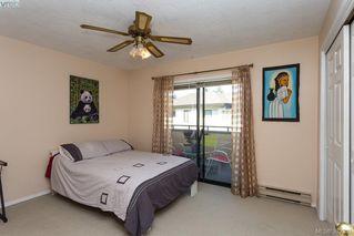 Photo 16: 304 3900 Shelbourne St in VICTORIA: SE Cedar Hill Condo Apartment for sale (Saanich East)  : MLS®# 768174