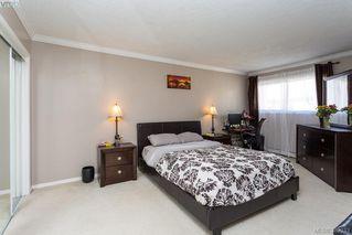 Photo 14: 304 3900 Shelbourne St in VICTORIA: SE Cedar Hill Condo Apartment for sale (Saanich East)  : MLS®# 768174