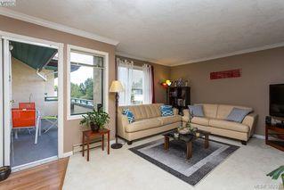 Photo 6: 304 3900 Shelbourne St in VICTORIA: SE Cedar Hill Condo Apartment for sale (Saanich East)  : MLS®# 768174