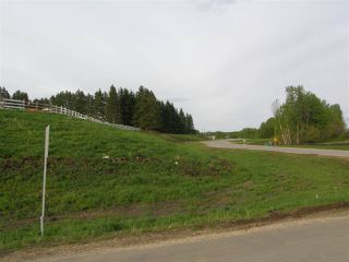 Photo 23: 16 53214 RGE RD 13 Road: Rural Parkland County Rural Land/Vacant Lot for sale : MLS®# E4099594