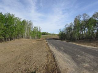 Photo 13: 16 53214 RGE RD 13 Road: Rural Parkland County Rural Land/Vacant Lot for sale : MLS®# E4099594